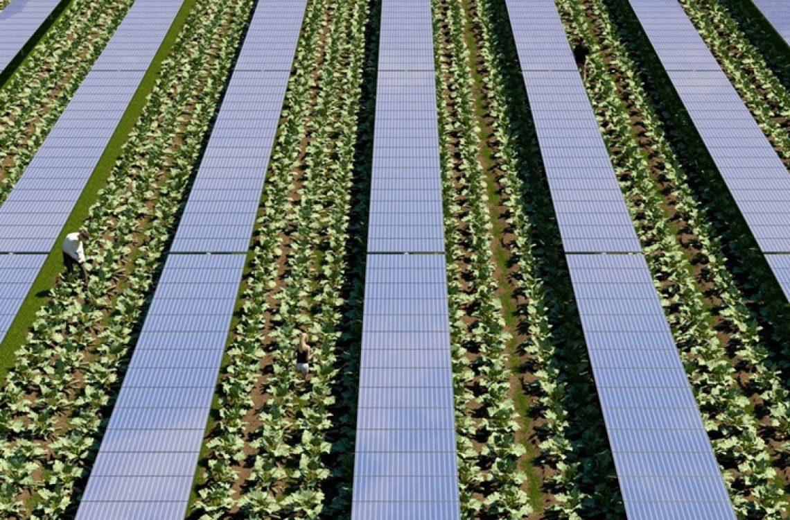 Connection-Conversione-elettrica-agricultura